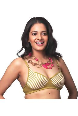 Comfortable Daily wear Bra JKLOVBRA-ADITI, 36b, brown