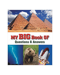 My Big Book Of Questions & Answers