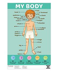 Charts: My Body