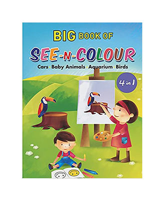 Big Book Of See N Colour (4 In 1)