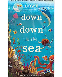 Down Down Down In The Sea: A Lift- And- Learn Peek- Through Book