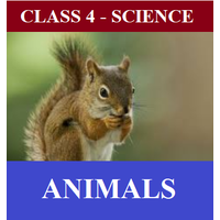 Class 4 Science, 50 worksheets and 7 online tests on chapter- Animals