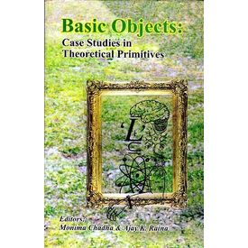 Basic Objects: Case Studies in Theoretical Primitives