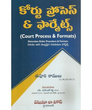 Court Process and Formats