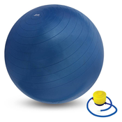 Nivia ab-580 65 cm Gym Ball (Blue)
