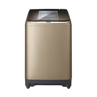 Hitachi SFP240XWV3CGXCH 20kg Top Load Fully Automatic Washing Machine with Pump, Champagne