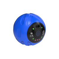 Rotai Muscle Relaxation Ball, Blue