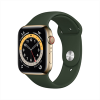 Apple Watch Series 6 GPS+ Cellular, 40mm Gold Stainless Steel Case with Cyprus Green Sport Band - Regular