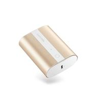 RAVPower 2-Port PD Pioneer Mini Power Bank 10000mAh 18W, Metallic Gold