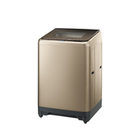 Hitachi SFP200XWV3CGXCH 19kg Top Load Fully Automatic Washing Machine with Pump, Champagne