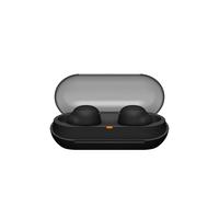 Sony WF-C500 True Wireless In-Ear Headphones,  Black
