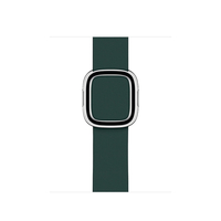 Apple 40mm Forest Green Modern Buckle, Medium