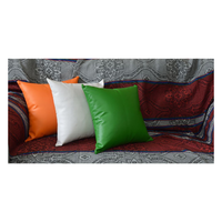 HomeZ Tricolor Cushion, m, with fillers