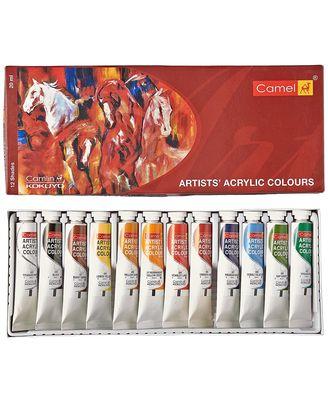 Artist Acrylic Colours Tps Aac Box (20ml X 12 Shades)