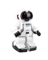 Silverlit Remote Controlled Echo Bot, Age 5+, multi