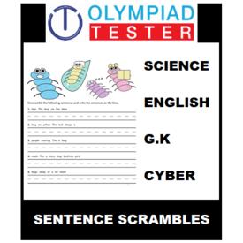 Class 5 Daily Sentence Scramble - 200 Printable Worksheets