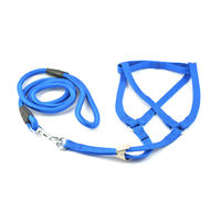 Easypets SMARTCHOICE Nylon Strap Dog Harnesses and Leash Set (Small) (Blue)