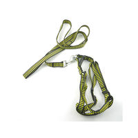 Easypets STELLAR Dog leash with collar and bell (Green)