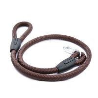 Easypets HUNTER Dog leash regular (Brown)