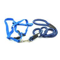 Easypets TRUECHOCIE Adjustable Braided Round Rope Dog Leash (Large) (Blue)