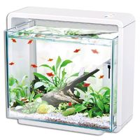 Hailea natur biotop fish tank, e 80