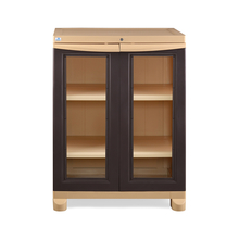 Nilkamal Freedom Small Cabinet - Weather Brown and Biscuit