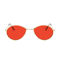 Metal Micro Red Sunglasses