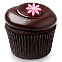 Chocolate Squared Cupcakes