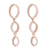 Exotic Silver Earrings-ERMX043