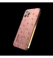 GIVORI APPLE IPHONE 12 PRO OSTRICH, 5g,  blush, 256gb