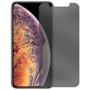 SWITCH SHATTER PRIVACY FRONT IPHONE XS MAX / 11 PRO MAX